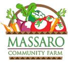Massaro Farm New Haven web design